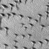 Mars Keşif Avcısı (MRO); Günün fotoğrafı Arizona'dan