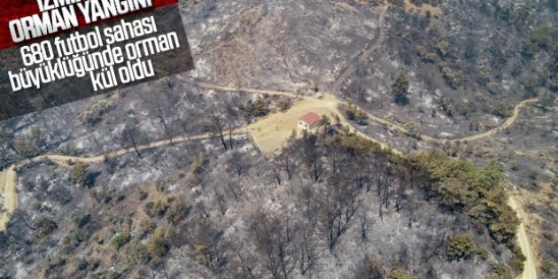 İzmir'de 500 hektar orman küle döndü
