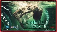 Lanetli Sular – Cursed Waters 2019 fragman izle
