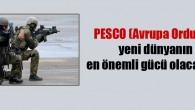 """Avrupa Birliği: """"Türkiye'siz PESCO (avrupa ordusu) ölü doğan bebeğe benzer"""""""