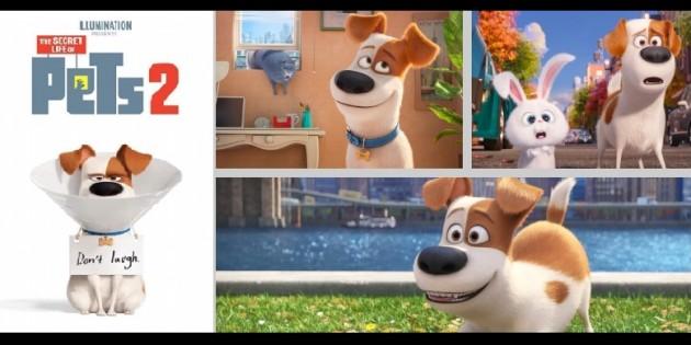 Evcil Hayvanların Gizli Yaşamı 2 2019 fragman izle