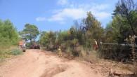 Antalya-Kumluca'da 1 hektar orman kül oldu.