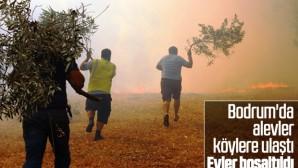 Bodrum'daki yangının bilançosu ağır