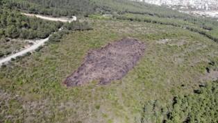 Kundaklama sonrası, Aydos Ormanı'ndaki tahribat