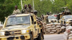 Joint ransom operation from Nigeria and Niger: 30 dead