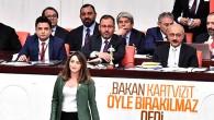 Bakan Mehmet Kasapoğlu Meclis'te konuştu