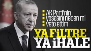 Cumhurbaşkanı Erdoğan'a termik santral vetosu soruldu