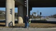 Sinop'ta trafik lambası dönemi