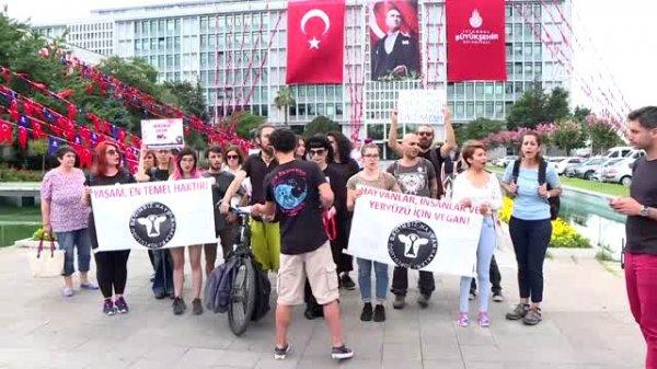 Adalar'daki faytonlar için İBB önünde protesto düzenlendi