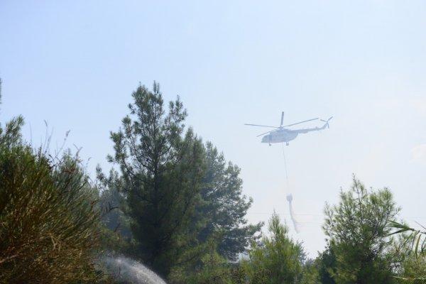 Antalya'da 1 hektar orman yandı