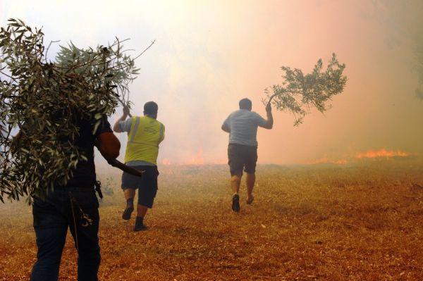 Bodrum'daki orman yangını tehlikeli boyuta ulaştı