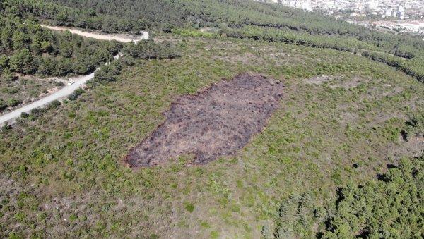 Kundaklanan Aydos Ormanı'ndaki tahribat görüntülendi