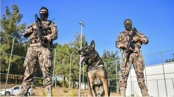 Emniyet müdürlüğünden dedektör köpeğe emeklilik partisi