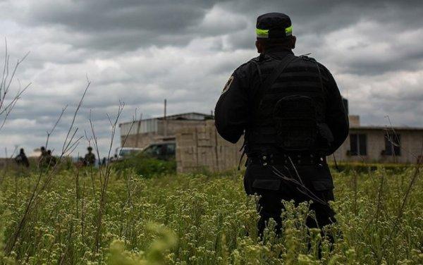 Meksika'da çiftlikte 14 ceset bulundu